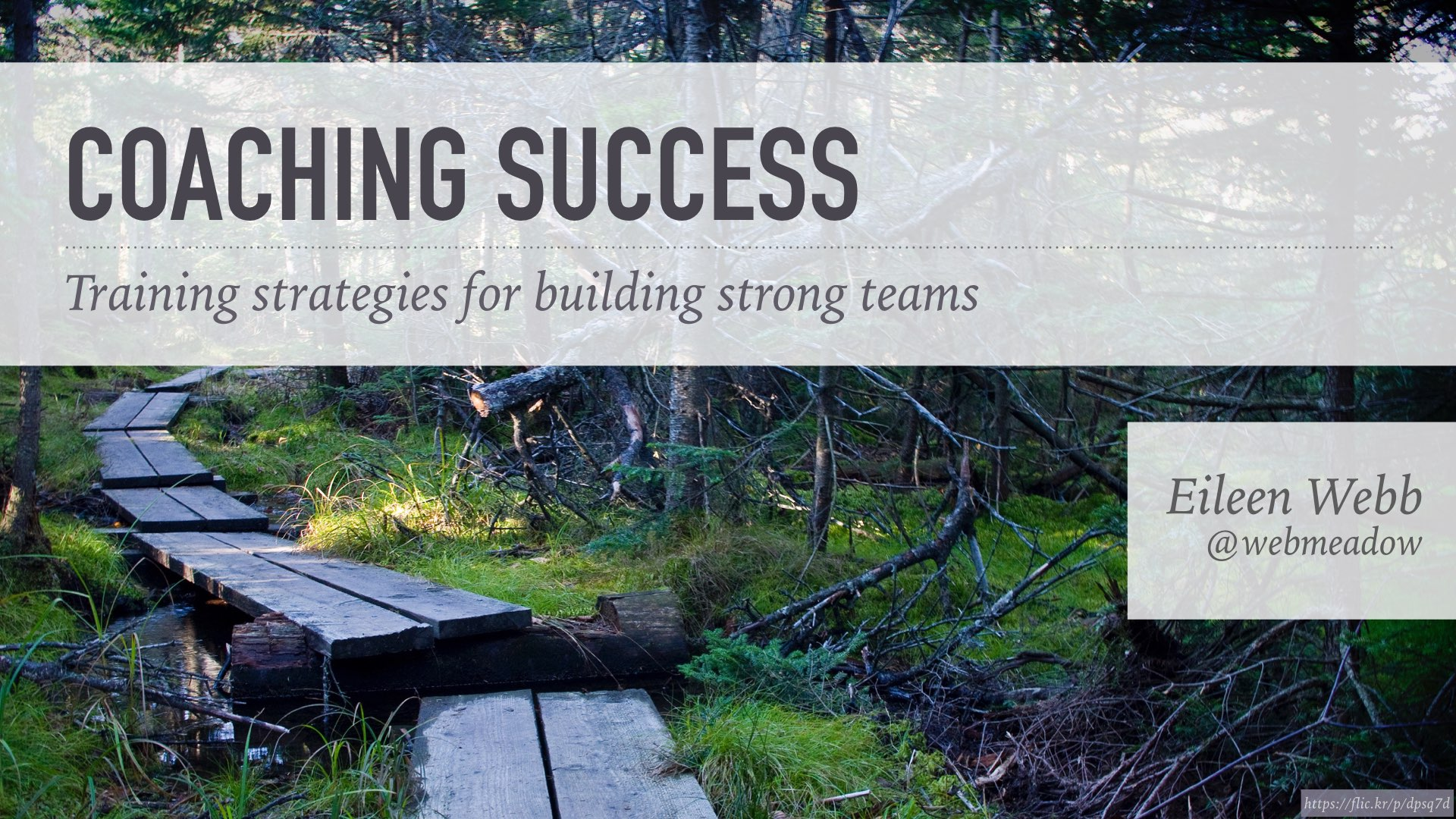 Coaching Success: Training Strategies for Building Strong Teams